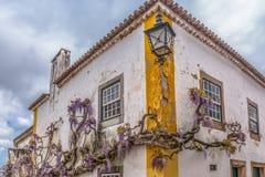 Vista di una costruzione vernacolare portoghese con la pianta di salita sulla facciata, sul villaggio medievale bidos di à «, nel immagini stock libere da diritti