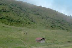 Vista di una valle sulle alpi svizzere con una stalla e le mucche Fotografia Stock Libera da Diritti