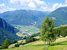 Vista di Valle \ Tauferer Ahrntal \ Immagine Stock