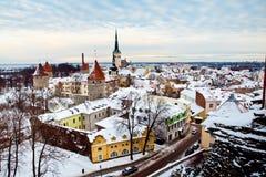 Tallinn nell'inverno, Estonia fotografie stock libere da diritti