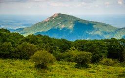 Vista di vecchia montagna dello straccio dall'azionamento dell'orizzonte nel parco nazionale di Shenandoah Fotografie Stock Libere da Diritti