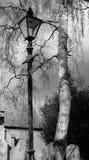 Vista di vecchie lapidi, veduta nel monocromio, insieme ad un palo della luce della chiesa del ferro battuto fotografia stock libera da diritti