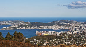 Vista di Wellington Fotografia Stock Libera da Diritti