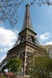 Vista diagonal de la torre Eiffel en resorte Fotos de archivo libres de regalías