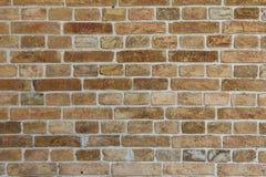 Vista dianteira da parede de tijolo Imagem de Stock