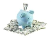 Vista dianteira Piggy feliz Imagem de Stock