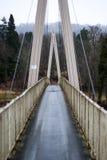Vista direta sobre uma ponte triangular Fotografia de Stock Royalty Free