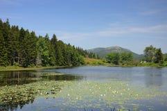 Vista distante da montanha Maine de Cadillac Fotografia de Stock