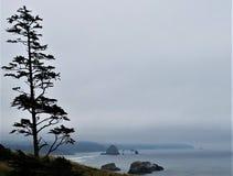 Vista distante da rocha do monte de feno na praia de Canon, Oregon fotos de stock