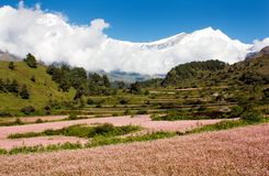 Vista do annapurna himal ao dhaulagiri Fotografia de Stock