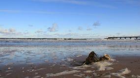 Vista do beira-mar Báltico com onda do mar e da ponte longa com espuma fotografia de stock royalty free