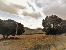 Vista do campo-algarinejo-Andalucia Foto de Stock