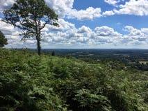 Vista do campo do monte do passo, Surrey, Inglaterra Fotos de Stock