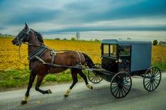 Vista do carrinho de Amish em uma estrada com um cavalo em Pensilvânia oriental imagem de stock royalty free