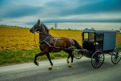 Vista do carrinho de Amish em uma estrada com um cavalo em Pensilvânia oriental fotografia de stock royalty free