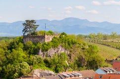 Vista do castelo Breisach, Baden-Wurttemberg, Alemanha Imagem de Stock