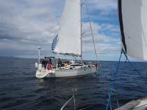 Vista do fiorde em Noruega Navigação do iate no mar azul Norwegiantravel Fotos de Stock Royalty Free