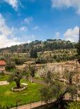 Vista do jardim em Jerusalem Fotografia de Stock