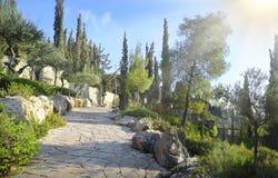 Vista do Jerusalém do Monte das Oliveiras Imagens de Stock