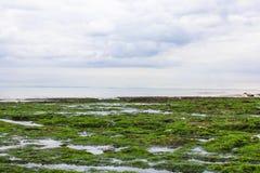 Vista do la Mancha do canal Imagens de Stock Royalty Free