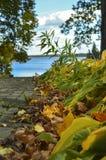 Vista do lago Fotografia de Stock