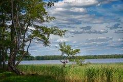 Vista do lago Imagem de Stock Royalty Free