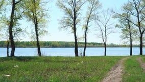Vista do lago através das árvores filme
