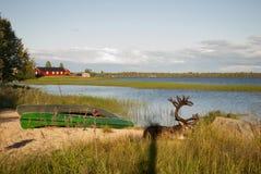 vista do lago com os cervos do norte que encontram-se perto do barco fotografia de stock