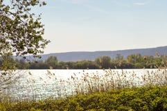 Vista do lago de Madine Fotos de Stock Royalty Free