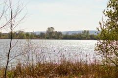 Vista do lago de Madine Imagem de Stock Royalty Free