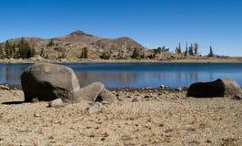 Vista do lago frog Imagens de Stock Royalty Free