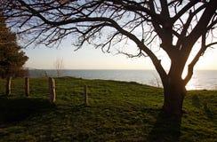 Vista do lago Huron fotos de stock royalty free