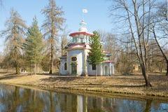 Vista do mandril chinês rangendo velho na tarde ensolarada de maio Selo de Tsarskoye, Rússia imagens de stock