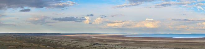 Vista do mar de Aral Fotos de Stock Royalty Free