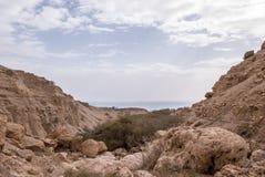 Vista do Mar Morto e do deserto fotografia de stock royalty free