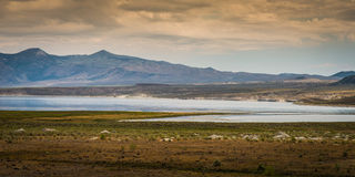 Vista do mono lago da estrada 395, Califórnia Foto de Stock Royalty Free