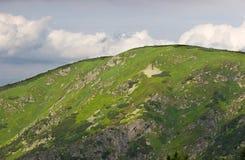 Vista do monte Imagem de Stock
