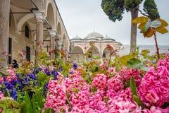 Vista do palácio de Topkapi em Istambul, Turquia fotografia de stock