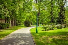 Vista do parque bonito com gramados verdes, as árvores de florescência e os arbustos foto de stock royalty free