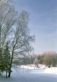 Vista do parque do inverno Fotografia de Stock Royalty Free