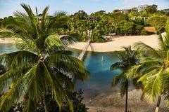 Vista do parque e da ponte de suspens?o da ilha de Sentosa imagem de stock royalty free
