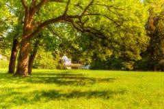 Vista do parque em Pushkin no dia de verão Fotos de Stock