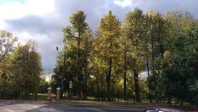 Vista do parque do outono fotografia de stock