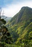 Vista do pico pequeno do ` s de Adam Paisagem da montanha em Sri Lanka, o pico Ella de Adam pequeno imagem de stock
