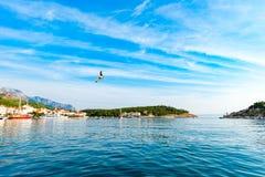 Vista do porto no mar de adriático em Makarska imagem de stock royalty free