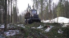 A vista do registador carregado move-se em madeiras do inverno vídeos de arquivo