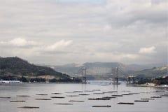 Vista do Ria de Vigo Fotos de Stock Royalty Free