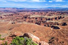 A vista do Rio Colorado e o parque nacional de Canyonlands do ponto do cavalo inoperante negligenciam Utá EUA fotos de stock