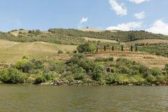Vista do rio, das propriedades, e dos vinhedos de Douro Imagem de Stock