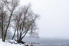 Vista do rio de Dnieper durante um dia de inverno frio e nevado fotografia de stock royalty free